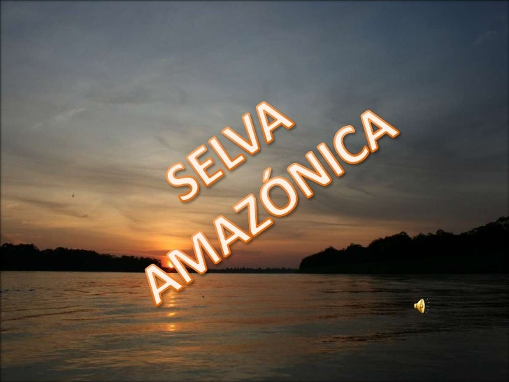 INDICE SELVA AMOZONICA CAPA EMERGENTE DOSEL SOTOBOSQUE SUELO