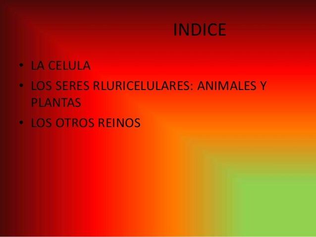 Presentación2 Slide 2