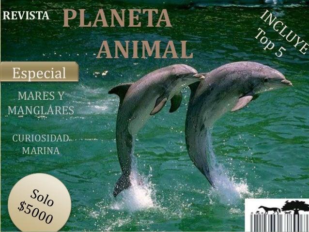 REVISTA  PLANETA ANIMAL  MARES Y MANGLARES CURIOSIDAD MARINA