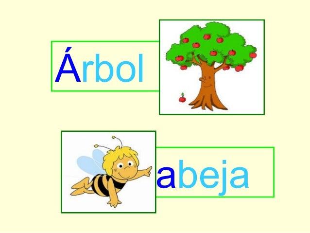 Abecedario animado for Arboles con sus nombres y caracteristicas