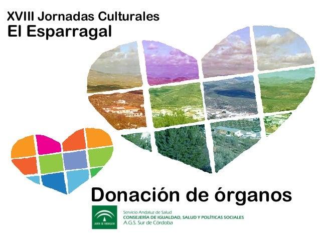 XVIII Jornadas Culturales El Esparragal Donación de órganos Donación de órganos XVIII Jornadas Culturales El Esparragal