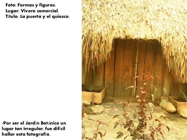Trabajo de composici n jard n bot nico de medell n for Vivero el botanico