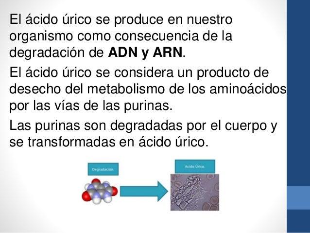 Tomate natural y acido urico para bajar el acido urico remedios caseros el perejil y el acido - Alimentos ricos en purinas acido urico ...