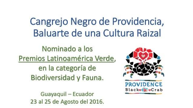 Cangrejo Negro de Providencia, Baluarte de una Cultura Raizal Nominado a los Premios Latinoamérica Verde, en la categoría ...
