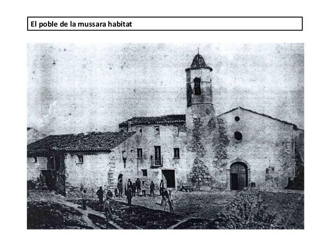 El poble de la mussara habitat