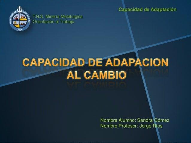 T.N.S. Minería Metalúrgica Orientación al Trabajo Capacidad de Adaptación Nombre Alumno: Sandra Gómez Nombre Profesor: Jor...