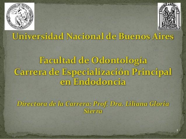 Universidad Nacional de Buenos Aires Facultad de Odontología Carrera de Especialización Principal en Endodoncia Directora ...