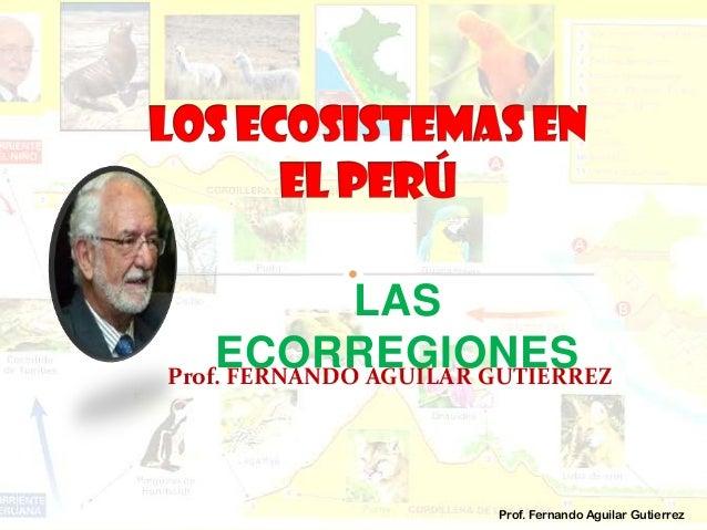 LAS ECORREGIONESProf. FERNANDO AGUILAR GUTIERREZ Prof. Fernando Aguilar Gutierrez
