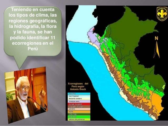 Los Ecosistemas en el Perú Slide 2