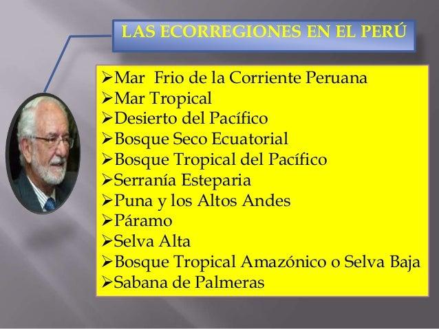 Los Ecosistemas en el Perú Slide 3