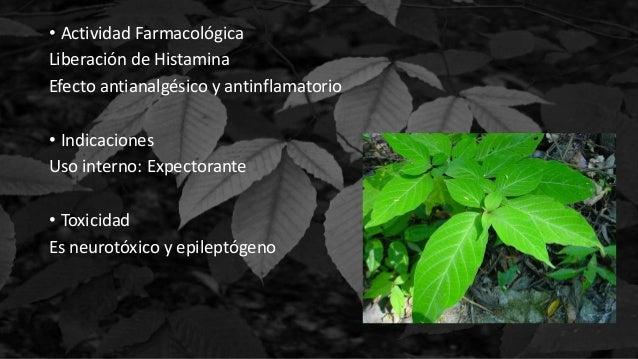 • Actividad Farmacológica Liberación de Histamina Efecto antianalgésico y antinflamatorio • Indicaciones Uso interno: Expe...