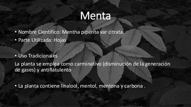 Menta • Nombre Cientifico: Mentha piperita var citrata. • Parte Utilizada: Hojas • Uso Tradicionales La planta se emplea c...