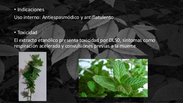 • Indicaciones Uso interno: Antiespasmódico y antiflatulento • Toxicidad El extracto etanólico presenta toxicidad por DL50...