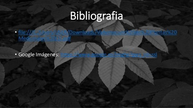 Bibliografia • file:///C:/Users/USER/Downloads/Vademecum%20de%20Plantas%20 Medicinales%20(1).pdf • Google Imágenes: https:...
