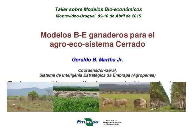 Taller sobre Modelos Bio-económicos Montevideo-Uruguai, 09-10 de Abril de 2015 Environmental issues affecting sustainable ...