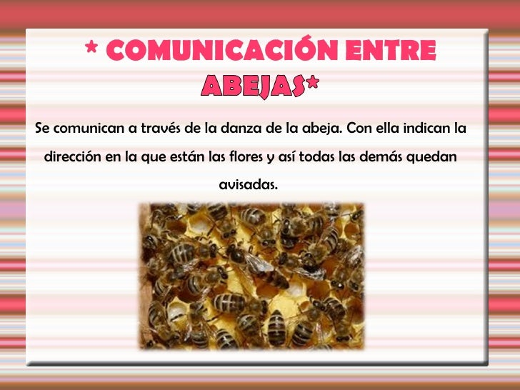 Cuando las abejas hacen esto prestan un gran servicio   a las flores. Las abejas son los polinizadoresmás                ...