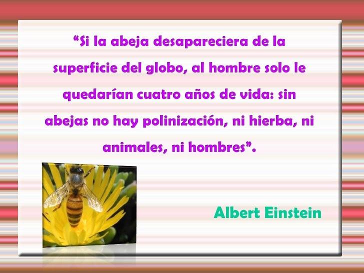 EL APICULTOR es la persona que cuida alas abejas y su trabajo consiste en obtener       los productos de la colmena.Lleva ...