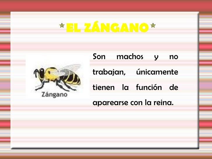 Las abejas se alimentan de néctar y polen:-Las abejas liban el néctar de las flores, que esun líquido azucarado que las ob...