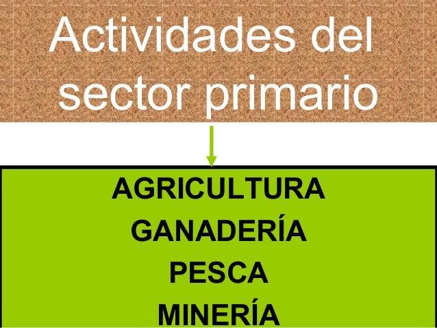 Actividades del sector primario AGRICULTURA GANADERÍA PESCA MINERÍA