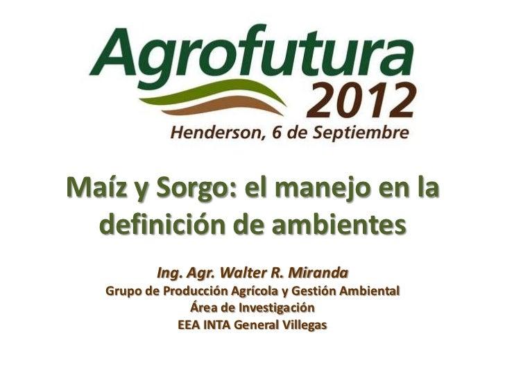 Maíz y Sorgo: el manejo en la definición de ambientes           Ing. Agr. Walter R. Miranda   Grupo de Producción Agrícola...