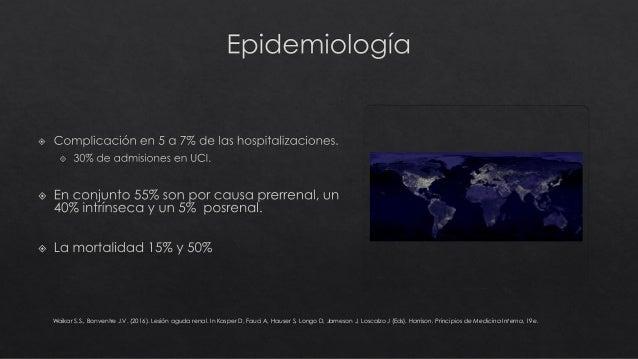 LESION RENAL AGUDA Slide 3
