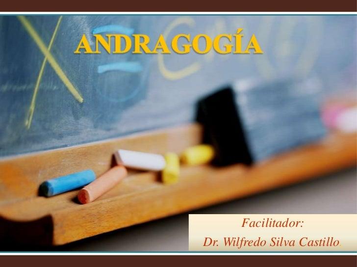 Facilitador:Dr. Wilfredo Silva Castillo.