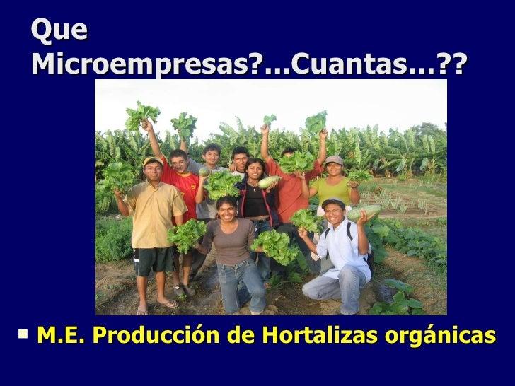 Presentaci n asociaci n chira for Asociacion de hortalizas