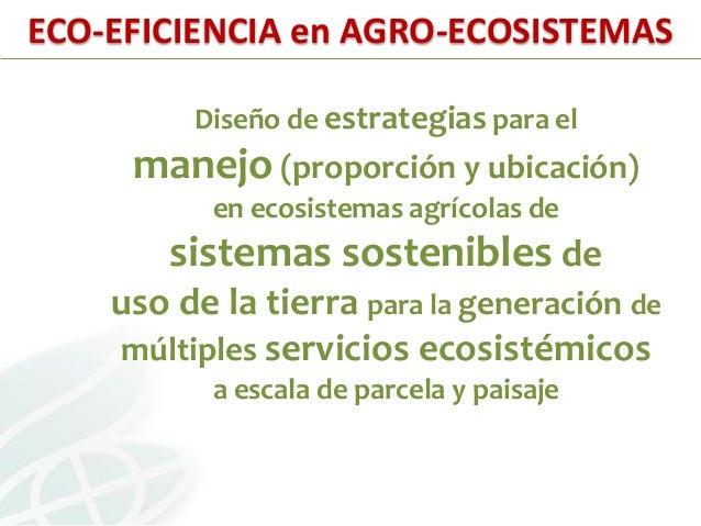Staff Suelos-LAC (Soil-mates):• Científicos:Steve Fonte, PhD - Ecología de SuelosDiego Valbuena, PhD - Ecología (Centro Am...