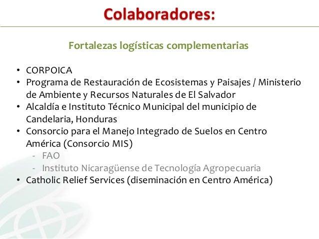 Estudio - Sistema Agroforestal Quesungual (2005-09)• Proyecto financiado por el Programa del Retodel Agua y la Alimentació...