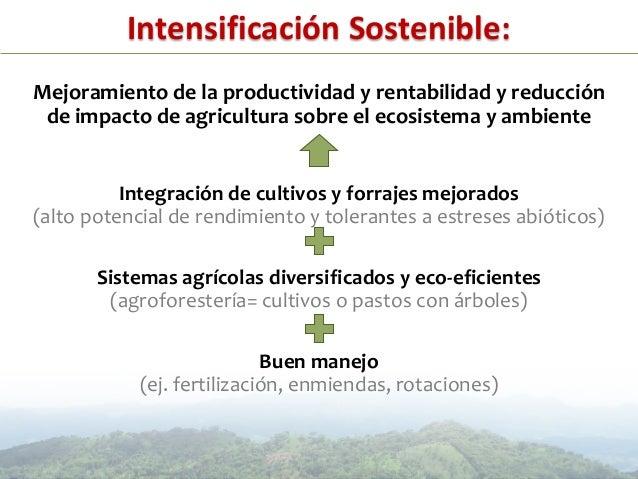• Colombia – Llanos Orientales:‒ Mejoramiento de la capacidad productiva del suelo(MADR, 2011-2013)‒ Sistemas agrosilvopas...