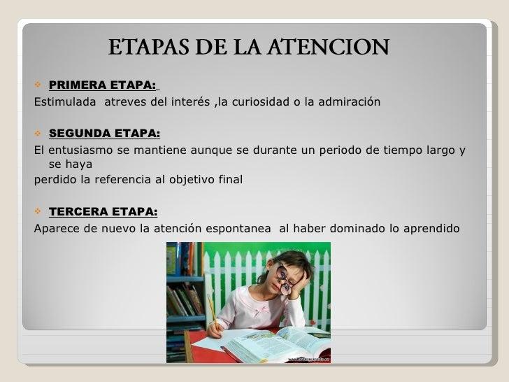 <ul><li>PRIMERA ETAPA:   </li></ul><ul><li>Estimulada  atreves del interés ,la curiosidad o la admiración </li></ul><ul><l...