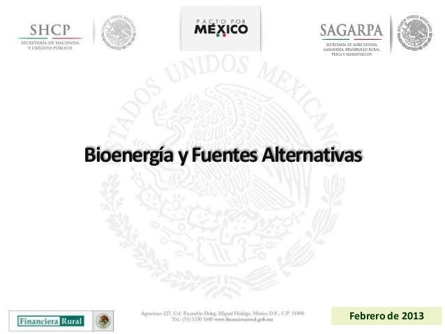 Bioenergía y Fuentes Alternativas                               Febrero de 2013