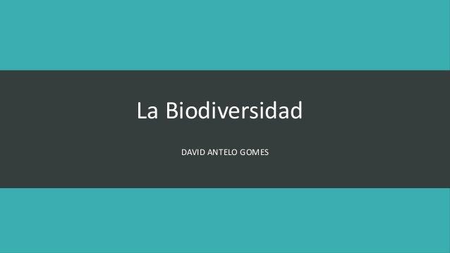 La Biodiversidad  DAVID ANTELO GOMES
