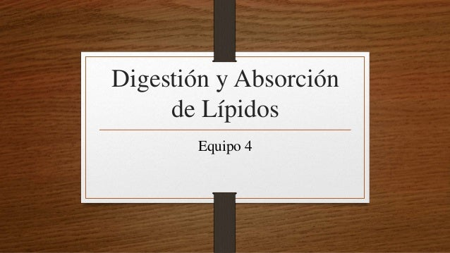 Digestión y Absorción de Lípidos Equipo 4