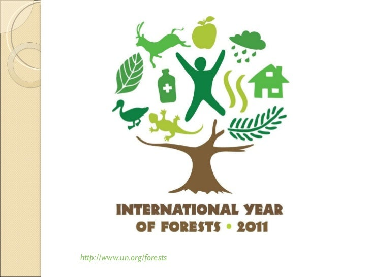 http://www.un.org/forests