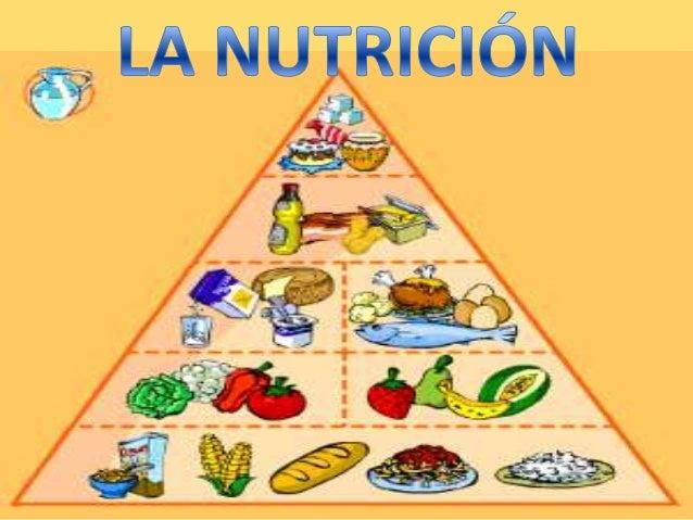 -CONCEPTOS NECESARIOS.-CARACTERÍSTICAS DE LA NUTRICIÓN.-NUTRICIÓN Y SALUD.-ANOREXIA.-BULIMIA.-OBESIDAD.
