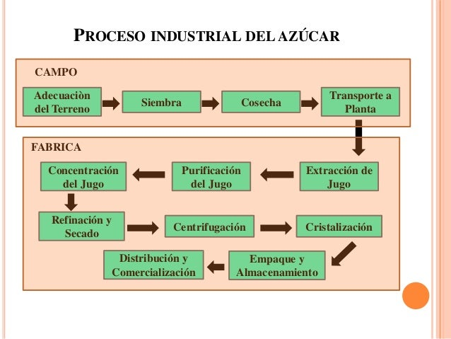 Circuito Productivo De La Caña De Azucar : Proceso industrial caña de azucar en colombia