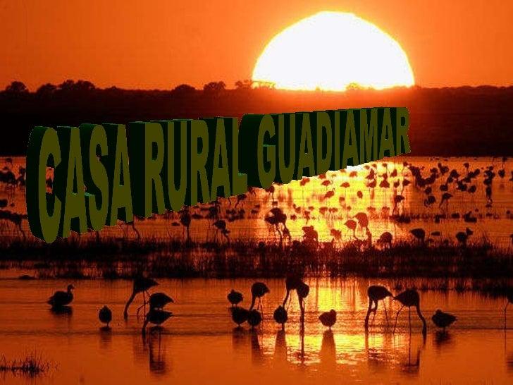 CASA RURAL GUADIAMAR