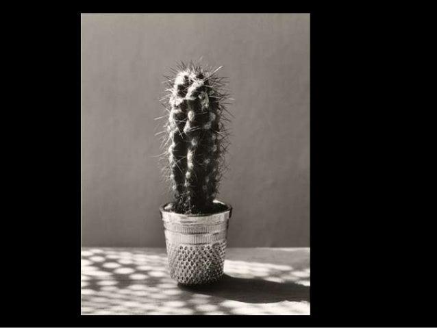 Presentaci n fotograf as chema madoz - Decorador de fotos gratis ...