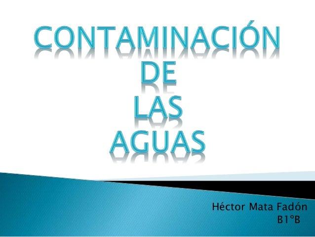 Héctor Mata Fadón B1ºB