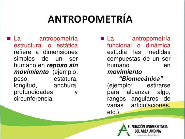 Presentaci n completa m dulo de ergonom a for Antropometria estatica