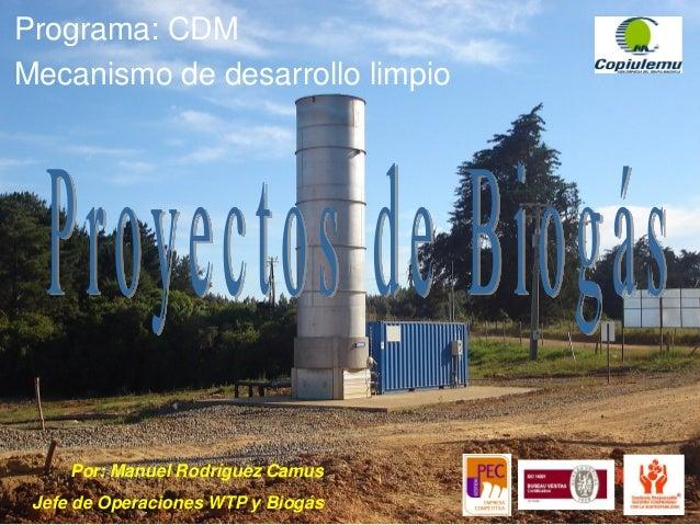 Programa: CDM Mecanismo de desarrollo limpio Por: Manuel Rodríguez Camus Jefe de Operaciones WTP y Biogás