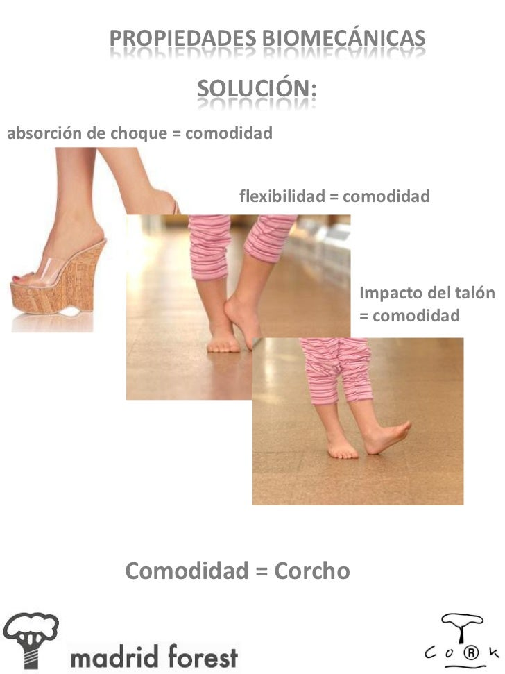 Caracter sticas t cnicas del corcho - Madrid forest ...