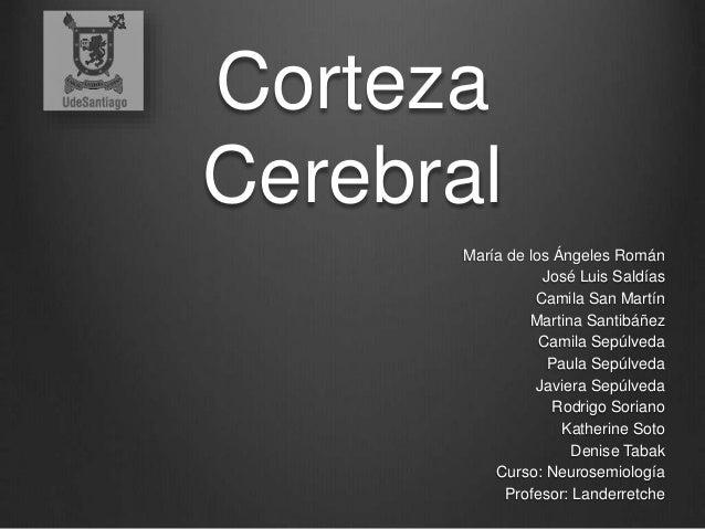 Corteza  Cerebral  María de los Ángeles Román  José Luis Saldías  Camila San Martín  Martina Santibáñez  Camila Sepúlveda ...