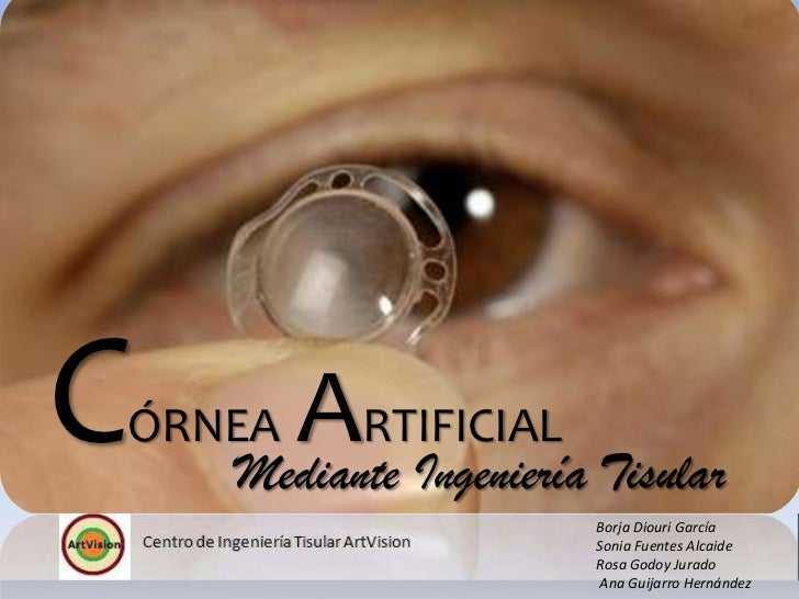 C   ÓRNEAARTIFICIAL Tisular       Mediante Ingeniería                     Borja Diouri García                     Sonia Fu...