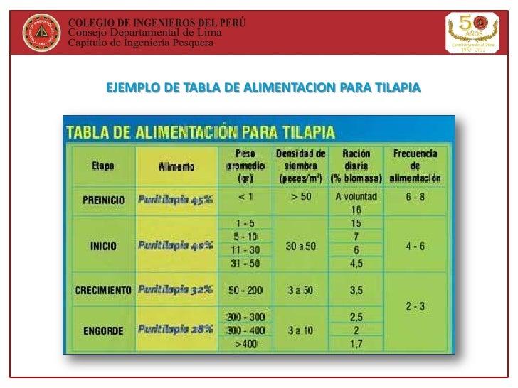 Cultivo de tilapia en el per y el mundo for Tabla de alimentacion para tilapia roja