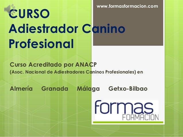 www.formasformacion.comCURSOAdiestrador CaninoProfesionalCurso Acreditado por ANACP(Asoc. Nacional de Adiestradores Canino...