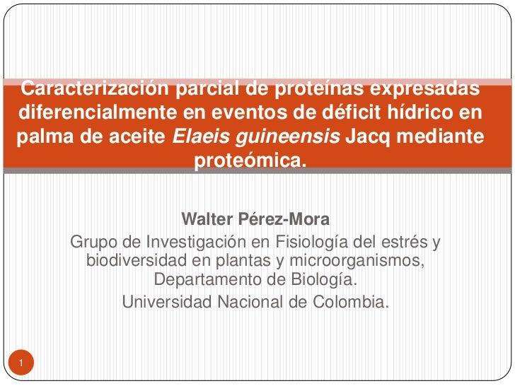 Caracterización parcial de proteínas expresadasdiferencialmente en eventos de déficit hídrico enpalma de aceite Elaeis gui...