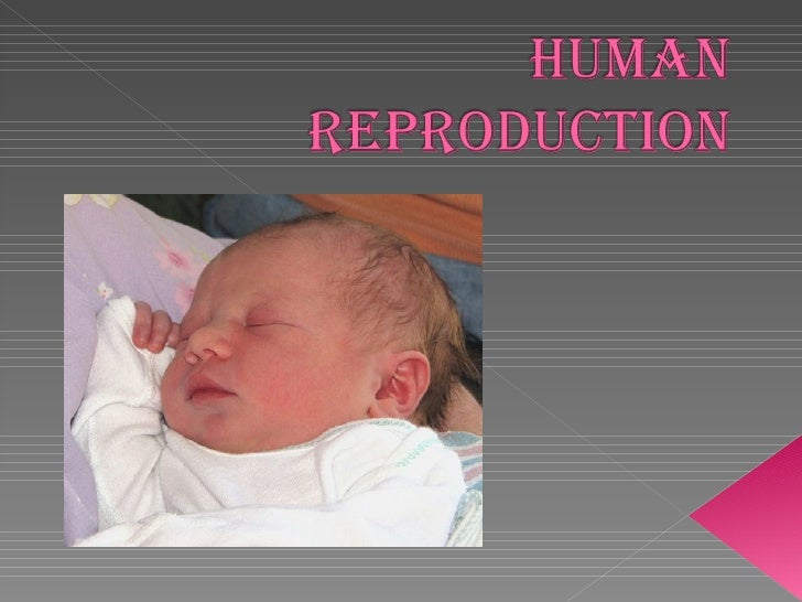 Sexual reproduction is how human beings have children.   SEX CHARACTERISTICS   There are physical difference between male ...