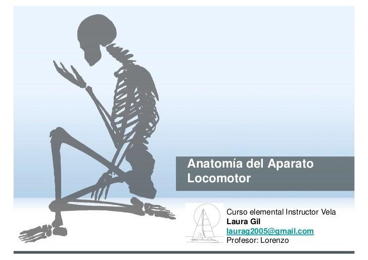 Anatomía del AparatoLocomotor      Curso elemental Instructor Vela      Laura Gil      laurag2005@gmail.com      Profesor:...